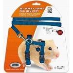 Correas de hamster